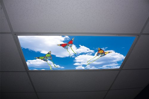 Butterfly Kites Skypanels - Replacement Fluorescent Light Diffuser