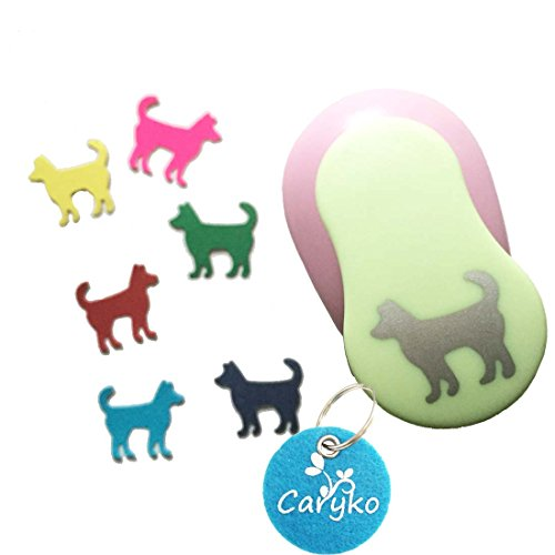 Caryko 1