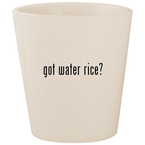 got water rice? - White Ceramic 1.5oz Shot Glass