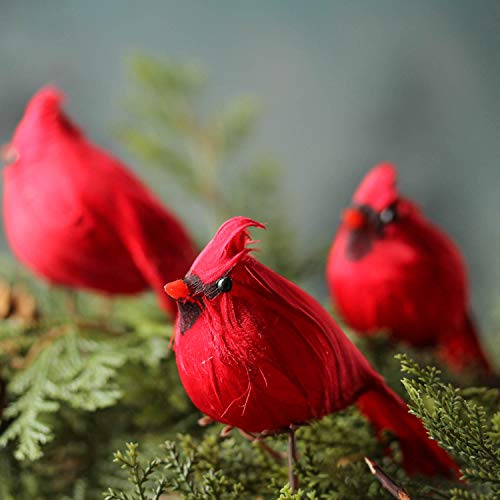Cardinal Christmas Ornament (Factory Direct Craft Package of 12 Bright Red Artificial Cardinal Birds with Clips for Christmas Tree Ornaments and Home Décor and Nature)