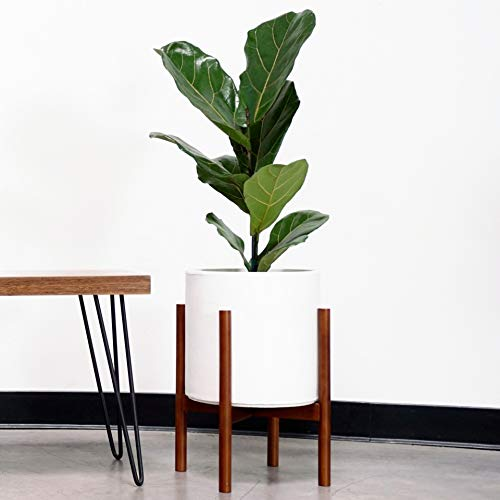 Plant Stand with Planter - Flower Pot Included | Large Modern Plant Pot with Wood Stand | Perfect for Succulent Plants, Indoor Plants & Artifical Plants (11 inch)