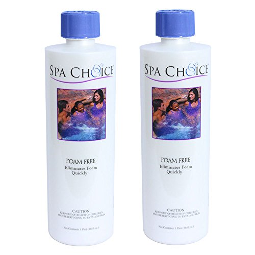 Choice 472 3 2031 02 Chemical 1 Pint 2 Pack product image