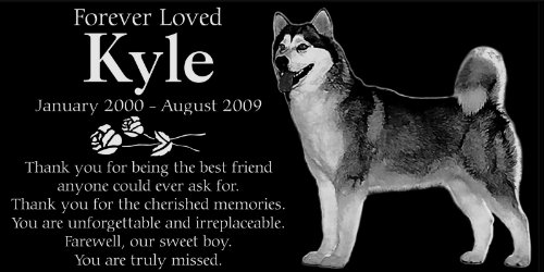 Personalized Alaskan Malamute Dog Pet Memorial 12''x6'' Engraved Black Granite Grave Marker Head Stone Plaque KYL1 by Lazzari Collections