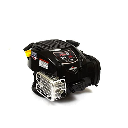 Briggs and Stratton 104M02-0028-F1 163cc 725Exi Series Push Mower ()