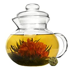 Primula 40-Ounce Glass Teapot with Infuser and Lid
