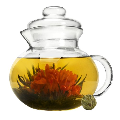 Primula Blossom Glass Teapot – Wide Mouthed Borosilicate Glass – 40 oz. – Dishwasher and Microwave Safe – Clear – Includes 1 Flowering (Primula Safe)