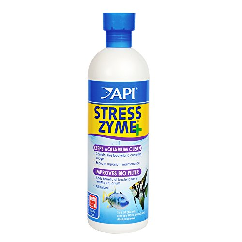 API STRESS ZYME Freshwater and Saltwater Aquarium Cleaning Solution 16-Ounce (Enzyme Clarifier)