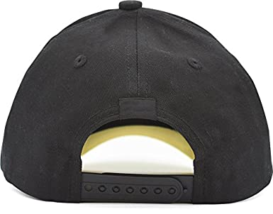 King of The Lab Washed 100/% Cotton Classic Adjustable c Low Profile Cap Hat