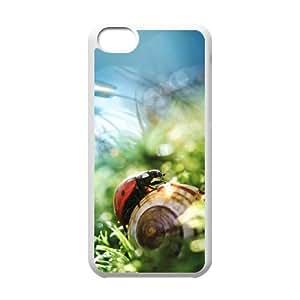 High Quality Cusom Hard Back Phone Case for Iphone 5C - Ladybug Hard Phone Case LIB707920