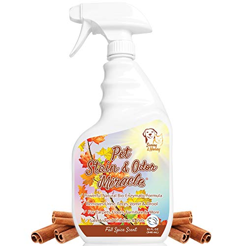 Pet Stain Odor Miracle