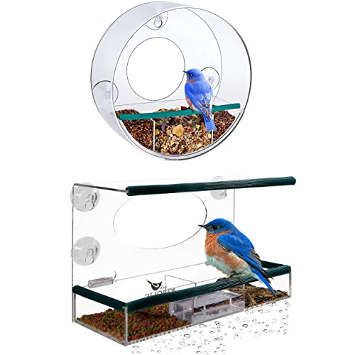 - Birdious Wild and Tube Window Bird Feeders: Enjoy Unique Watch Small & Large Birds. Easy Mounted 4 Strong Suction Cups, Squirrel Proof with Seed Tray. Best Gift Idea