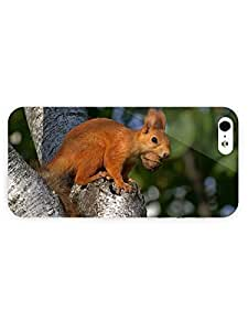 3d Full Wrap Case For Sam Sung Galaxy S5 Cover Animal Ginger Squirrel With A Nut
