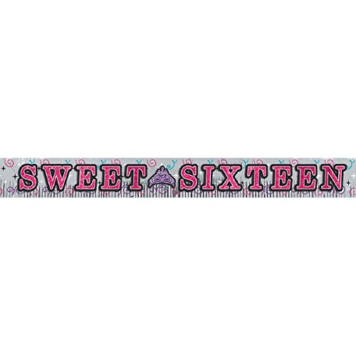 Chic Sweet Sixteen Birthday Celebration Foil Fringe Party Banner with Glitter Paper Letters (1 Piece), Silver/Pink, 10' x 11 1/2