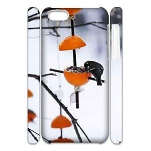 diy phone caseBird Discount Personalized 3D Cell Phone Case for ipod touch 5, Bird ipod touch 5 3D Coverdiy phone case