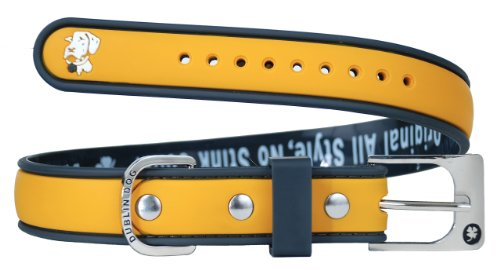 Dublin Dog Waterproof Dog Collar, Medium 13 inches - 18 inches, Hunter Orange