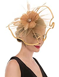 de3c7de1bad46 Fascinator Hat Feather Mesh Net Veil Party Hat Flower Derby Hat with Clip  and Hairband for
