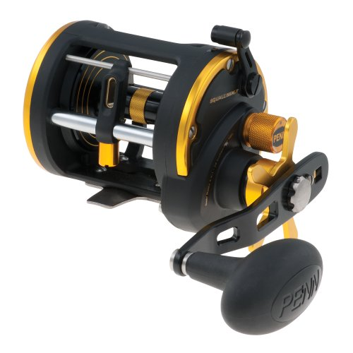 Penn Squall Level Wind Reel SQL20LWLH