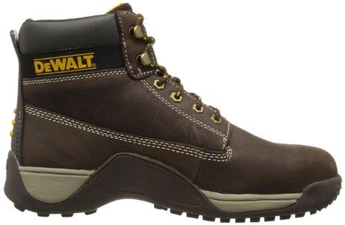 Marron Dewalt Homme Apprentice Sécurité 5 De marron Chaussures v pS4RSxa