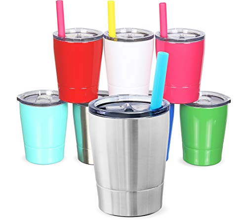 Colorful PoPo Kids Stainless Steel Cup Lovely Small Rambler Tumbler Sippy Cup with Lid and Silicone Straw, 8.5 OZ (1, Natural Color) - Natural Color Straw
