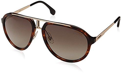 Carrera Men's Ca1003s Aviator Sunglasses, HAVANA GOLD/BROWN GRADIENT, 58 mm (Havana Carrera)