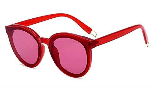 Sunglasses San Francisco in - Sunglasses In Francisco San