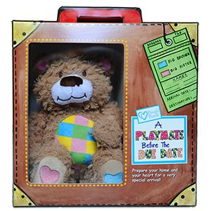 Teddy Bear Toy -