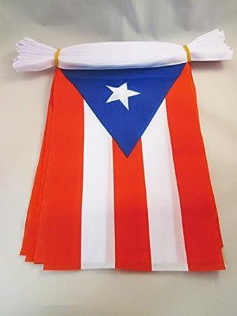 AZ FLAG Guirnalda 6 Metros 20 Banderas de Puerto Rico 21x15cm - Bandera PUERTORRIQUEÑA 15 x 21 cm - BANDERINES: Amazon.es: Jardín