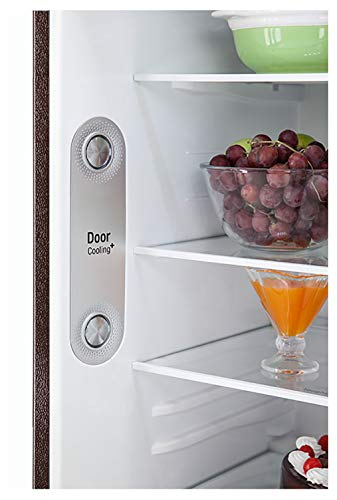 LG 308 L 3 Star with Inverter Double Door Refrigerator (GL-T322RRS3, Russet Sheen) 2021 August Frost-free refrigerator; 308 litres capacity Energy Rating: 3 Star Warranty: 1 year on product, 10 years on compressor