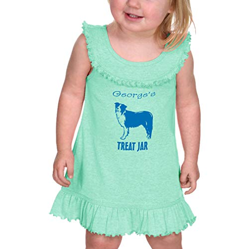 Price comparison product image Personalized Custom Dog's Treat Jar Pets Taped Neck Cotton / Polyester Infant Girl Ruffle Tank Dress - Ice Green,  12 Months
