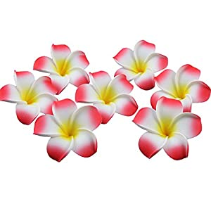 Sealike 100 Pcs Diameter 2.4 Inch Artificial Plumeria Rubra Hawaiian Flower Petals For Wedding Party Decoration with Stylus Red 1