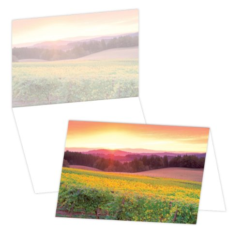 UPC 040469042487, ECOeverywhere Sunrise and Vineyards Boxed Card Set, 12 Cards and Envelopes, 4 x 6 Inches, Multicolored (bc12120)