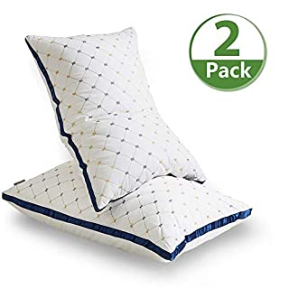 AiAngu Pillows for Sleeping - [2 Pack] Premium Hotel Bed Pillows,Breathable Down Alternative Cooling Pillows Good for Side Back and Stomach Sleepers,100% Breathable Cotton Cover Skin-Friendly (Queen)