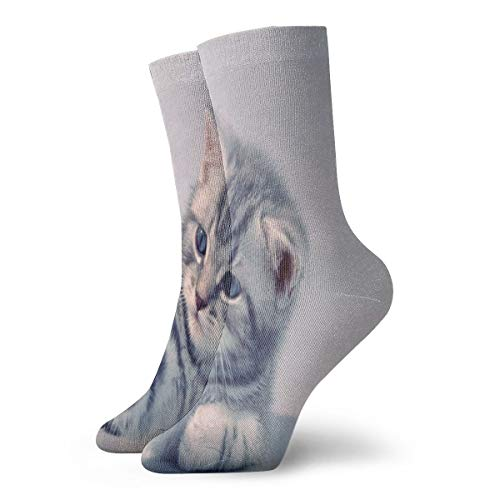 Crew Socks Aggressive Kitten Animals Cat Custom Personalized Unisex Sports Stocking Party Sock Clearance for Teens ()