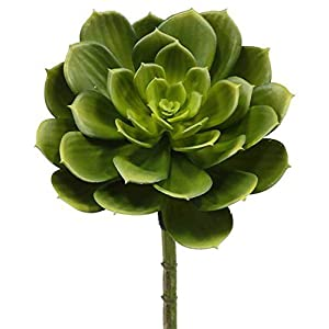 A & B Floral Succulent Leaves Festive Green 8 inch Acrylic Artificial Harvest Flower Pick 48
