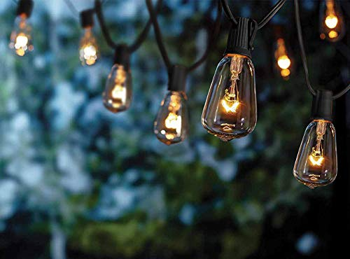 10Ft String Lights with 11 Clear Edison Light Bulbs, UL Listed E12 Base for Party Porch, Backyard Patio-Black Wire ()