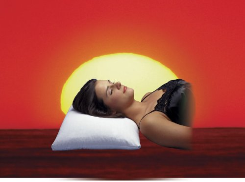 Makura Buckwheat Pillows 2 Pack