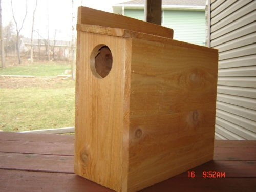 Cedar Squirrel Nesting Box/ Squirrel House. Handmade In The (Squirrel Nesting Box)