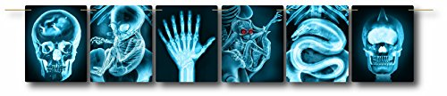 (Forum Novelties Mad Scientist-Line of X-Rays)