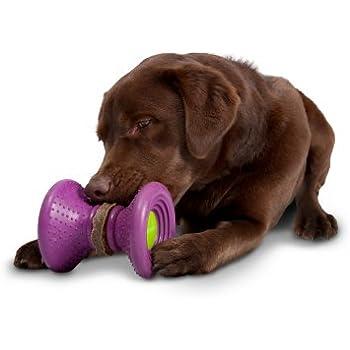 Pet Supplies : Pet Chew Toys : PetSafe Busy Buddy Ultra
