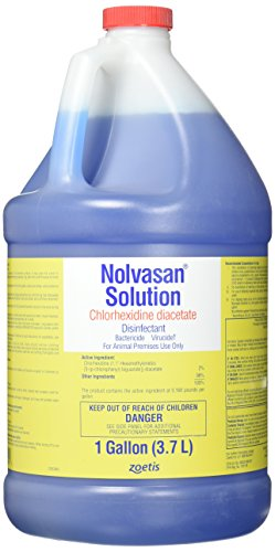 PFIZER EQUINE 061598 Nolvasan Disinfectant, 1 gallon by PFIZER EQUINE PRODUCTS