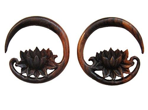 0 gauge plugs lotus - 4