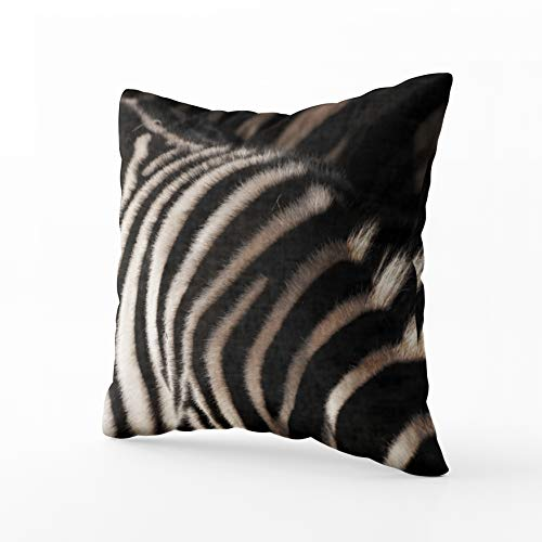 (Musesh Zebra Print Photo Realism Cushions Case Throw Pillow Cover for Sofa Home Bedding Decorative Pillowslip Gift Ideas Household Pillowcase Zippered Pillow Covers 18X18Inch )