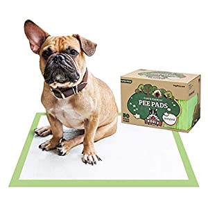 Pogi's Training Pads – Large, Super-Absorbent, Earth-Friendly Puppy Pee Pads for Dogs