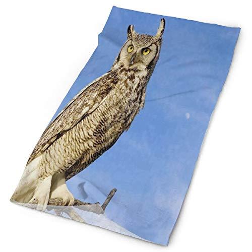 Headband Great Horned Owl Outdoor Scarf Mask Neck Gaiter Head Wrap Sweatband Sports - Headband Horned
