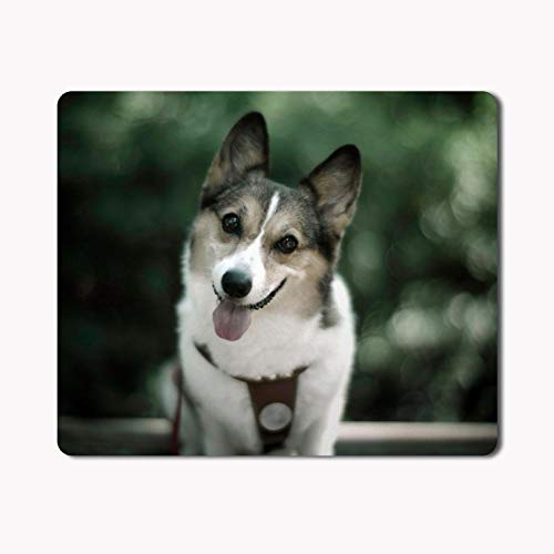 iKraft Cute Dog Printed Rectangle Non-Slip Rubber, Custom Mouse Pad- Mousepad 180x220x3mm