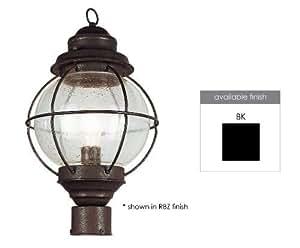 Trans Globe Lighting 69902 BK 1-Light Post Lantern, Black Color: Black Outdoor/Garden/Yard Maintenance (Patio & Lawn upkeep)