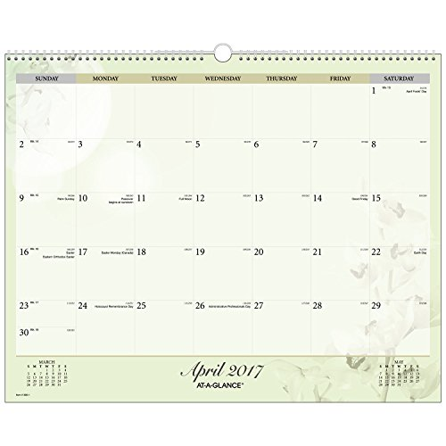 AT-A-GLANCE Wall Calendar 2017, Monthly, 14-7/8 x 11-7/8″, Nature (998-1)