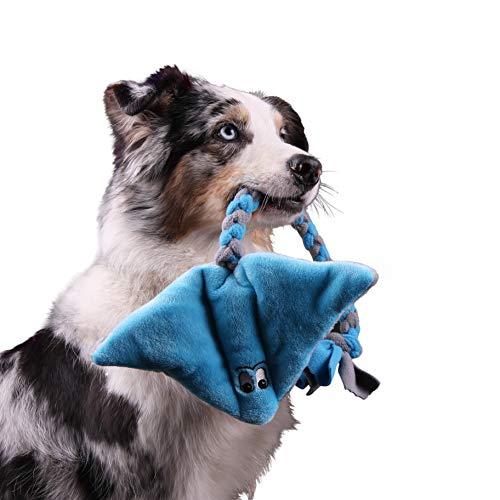 Interaktives Hundespielzeug aus Plüsch Quietschend – Robustes Spielzeug zum Training, Tauziehen und Zerrspiele mit Hund…