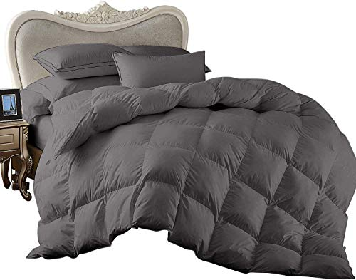 Egyptian Cotton Saanvi Creations 1 Piece Exclusive Goose Down All Season Comforter 800 Thread Count 100% Solid (King/California King : Dark Grey)