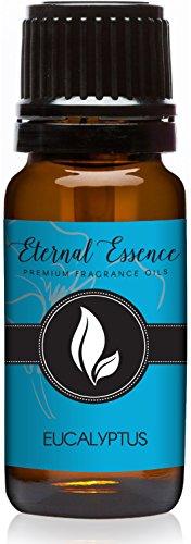 (Eucalyptus Premium Grade Fragrance Oil - 10ml - Scented)